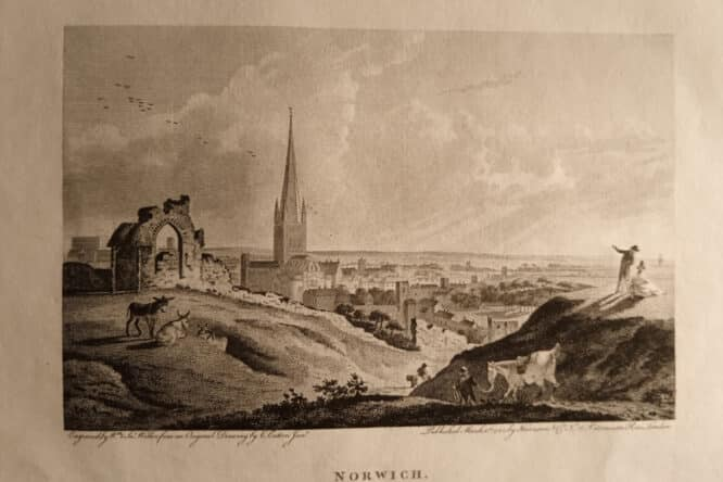 Norwich print 1792 Charles Catton Junior painting