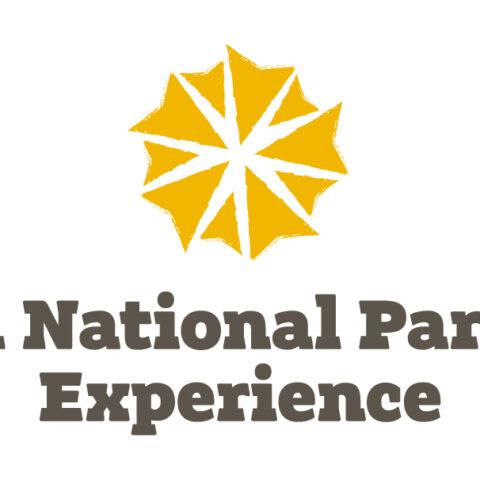 Broads National Park Experiences